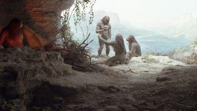 Photo of الكشف عن آثار حمض نووي لنوع غير معروف من البشر