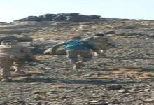 "Photo of تعز تشتعل مجددا ومعارك ضارية ولواء عسكري يفقد مواقعه ""تعز تحت النار"" (تفاصيل هامة)"