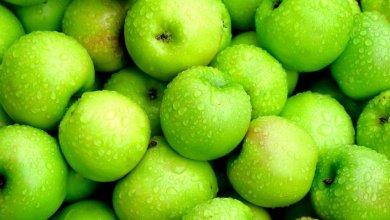 Photo of فوائد لا تحصى.. تعرف على فوائد التفاح الأخضر التي تفوق الأحمر والأصفر