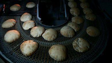 Photo of حول سلامة الغذاء  بالفيديو.. جرذ فوق الخبز يثير الجدل بعد حالات التسمم في الأردن