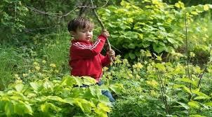 صورة دراسة..لعب الأطفال في الطبيعة يعزز مناعتهم