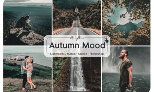 Autumn Mood Lightroom Presets
