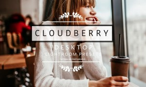 Desktop Lightroom Presets CLOUDBERRY 3212281