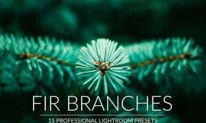 Fir Branches Lr Presets 3140261