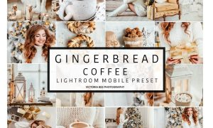 Mobile Lightroom Preset GINGERBREAD 3110860