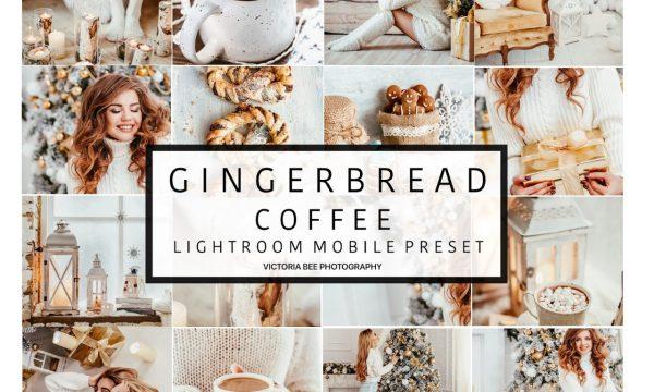 Mobile Lightroom Preset GINGERBREAD 3110860