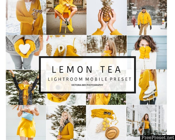 Mobile Lightroom Preset LEMON TEA 3161567