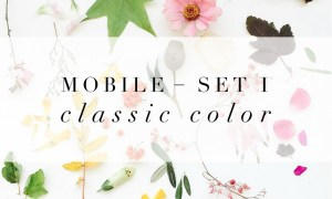 Jessica Kettle - Set I + Set II Desktop & Mobile Presets