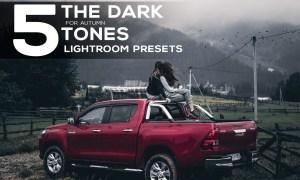 5 Dark tones presets for Lightroom 2880601