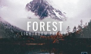Lightroom Presets Moody Forest 3336411