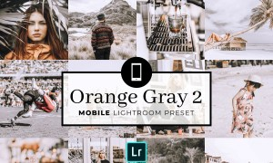 Mobile Lightroom Preset OrangeGray2 3320045