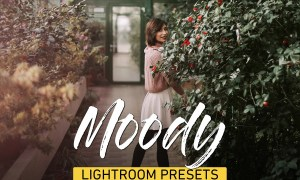 Moody Lightroom Presets Bundle 3320760