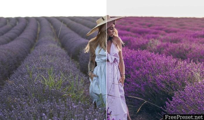 Yulia Bezdar - Provence Desktop & Mobile Presets
