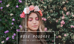 Desktop Lightroom Presets ROSE 3628869