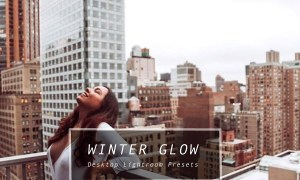 Desktop Lightroom Presets WINTERGLOW 3622117