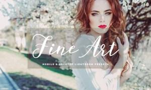Fine Art Mobile & Desktop Lightroom Presets BNGX589