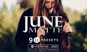 June Matte Lightroom Presets 304197