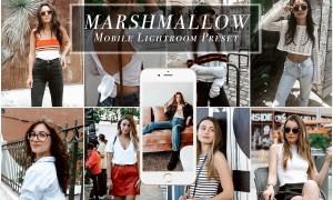 Mobile Lightroom Preset for Bloggers 3472020
