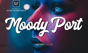 Moody Portrait Lightroom Presets 2577414