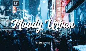 Moody Urban Lightroom Presets 2582914