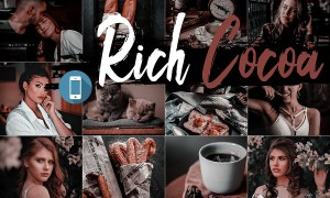 Neo Rich Cocoa Theme mobile lightroom presets