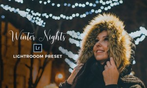Sandrastipan - Winter Nights Lightroom Preset – Desktop + Mobile