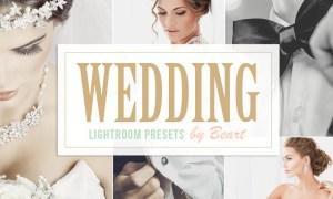 Wedding Lightroom Presets 101567