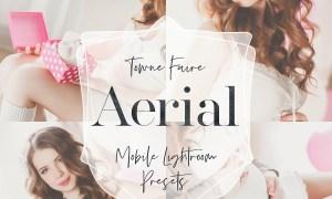 Aerial - Mobile Lightroom Presets 3761980