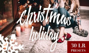 Christmas Holiday Lightroom Presets 774PWX