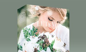 Kreativ Wedding LUTs Vol1 for Capture One Pro (Win/Mac)