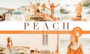 Orange Lightroom Mobile Preset VS4VYQ