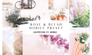 Rose & Blush Blogger Mobile Preset 3666759