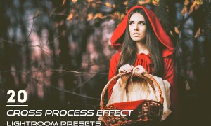 20 Cross Process Effect Presets 3820066