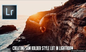 500+ Luts for Lightroom worth ( Sam kolder,Peter Mckinnon...)