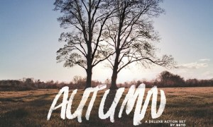 Autumn Action 2X66B9