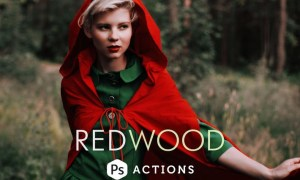 Redwood Fairytale Photoshop Actions