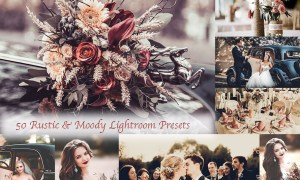 50 Rustic Moody Lightroom preset 2018388