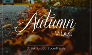 Autumn Vibes - Lightroom Presets 1957277
