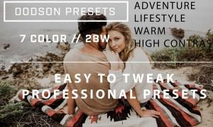 Dodson Presets (Pack 1) 1447768