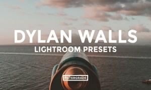 Dylan Walls Lightroom Presets