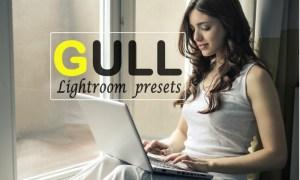 Gull Instagram Blogger Lightroom Presets