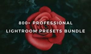 Lightroom Presets Bundle Master Kit 1395680