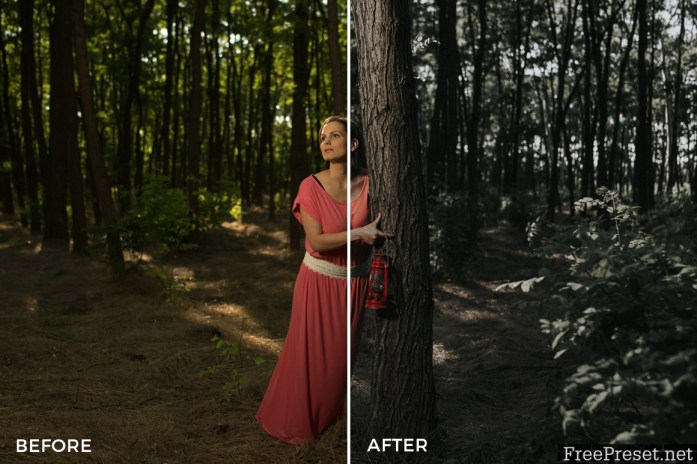 Marcell Faber Film Look Lightroom Presets