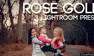 Rose Gold Lightrom Preset 20534862