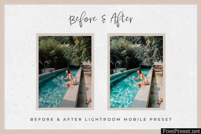 Summer Lightroom Mobile Presets 3890116