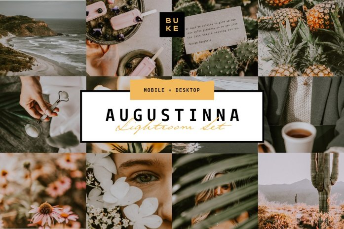 Augustina Lightroom Preset 4008293