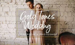 Gold Film Toned Wedding Presets 1310385