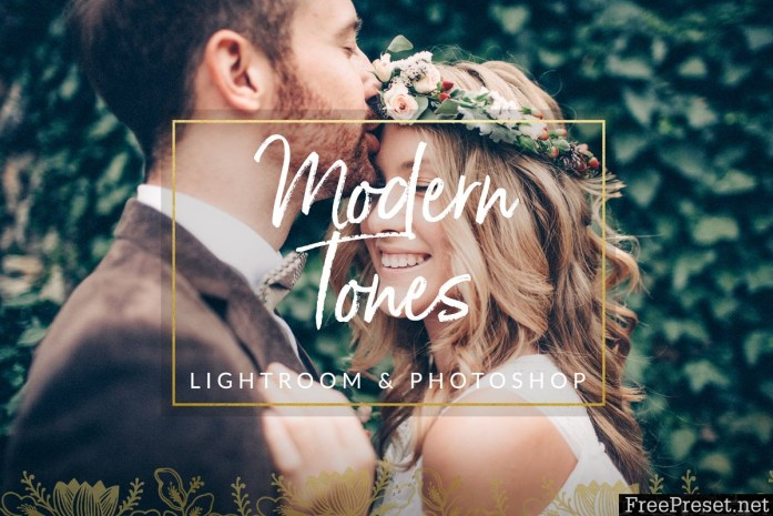 Modern Wedding LR and PS Filters 1329502