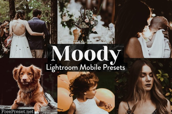 Moody Lightroom Presets Mobile 4015357
