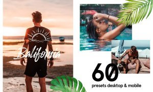 60+ Balifornia Presets Bundle 4338377